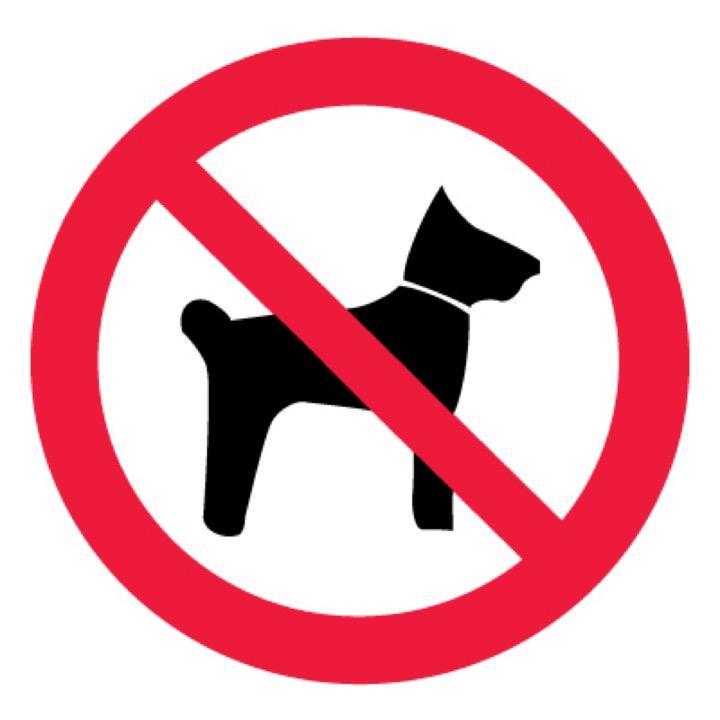 Знак P14 Запрещается вход (проход) с животными •ГОСТ 12.4.026-2015• (Пластик 200 х 200)