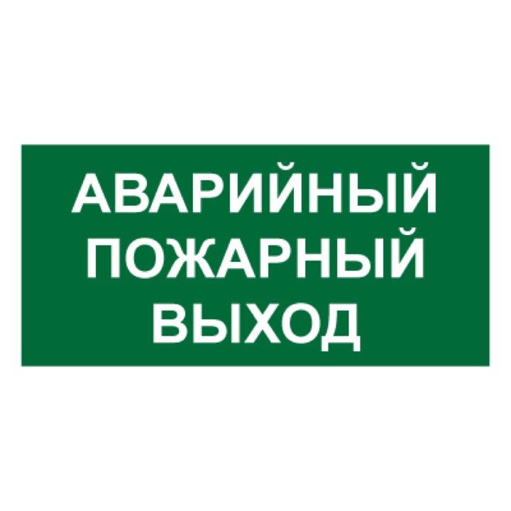 Знак T58A Аварийный выход (Пластик 150 Х 300)