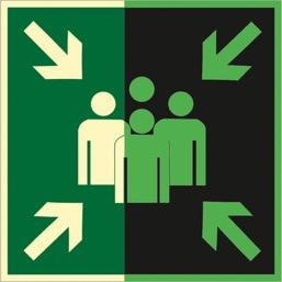 Знак E21 Пункт сбора (Фотолюминесцентный Пластик 200 x 200) Т1
