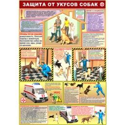 """Плакат """"Защита от укусов собак"""" - 1 л."""